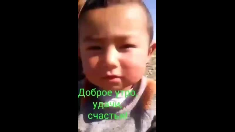 Video-ba005c451c7b486122a85a0d47f31f93-V.mp4