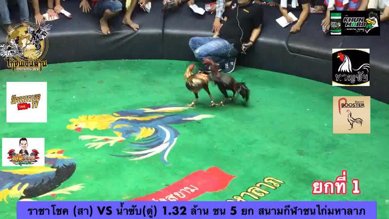 ยกที่1 ราชาโชค vs น้ำซับ 13-7-62 สนามกีฬาชนไก่มหาลาภ โดยนายไก่ชน