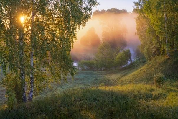 Фрагменты туманного рассвета Фото: Дмитрий Медянцев