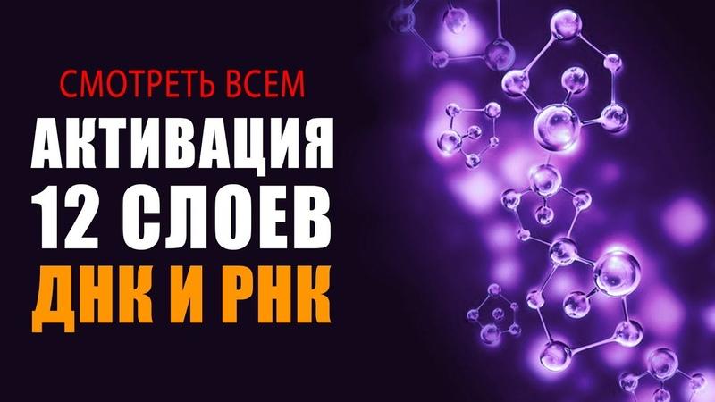 Смотреть ВСЕМ СУПЕР Фильм Активация 12 Слоёв Алмазного ДНК и РНК Исцеляющие Медитации
