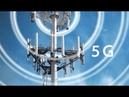 035 SOS Вышки смерти 5G. Регрессивный гипноз Елены Гиллео
