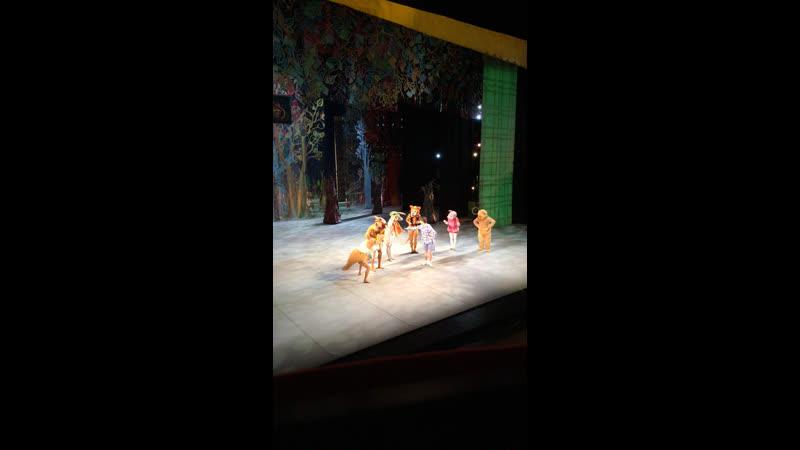 Премьера балета «Приключения Винни Пуха». День 2.