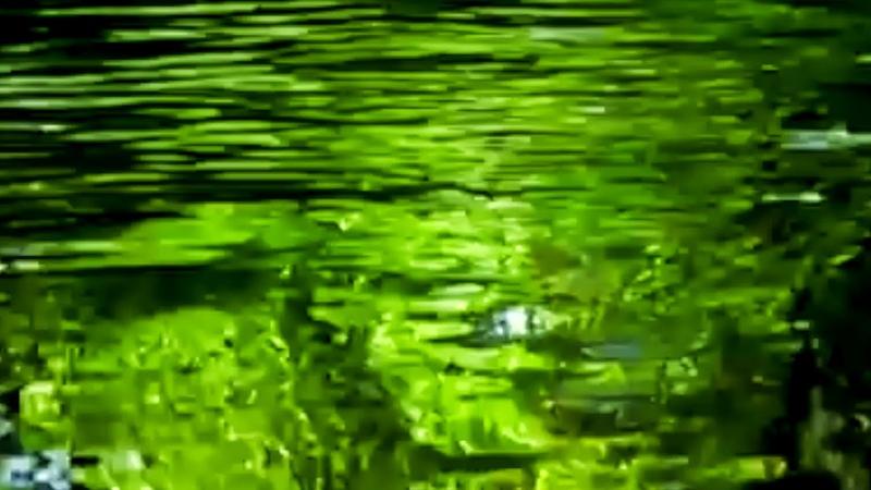 Nikl Leb - Dj Creek watercourse