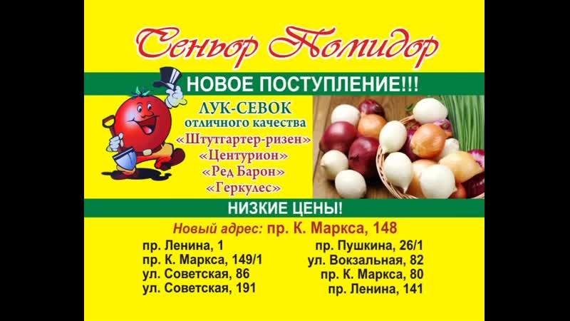 Zast_SeniorPomidor_luk_12.02.19_25
