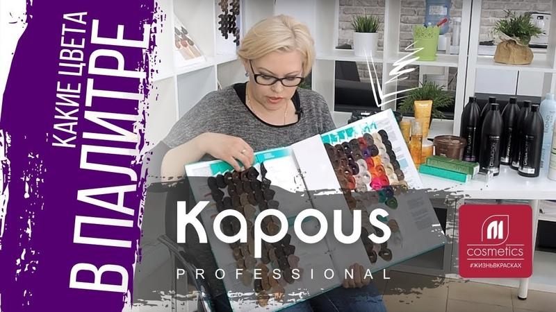 Палитра Kapous. Какие цвета в палитре Капус Как читаются цвета в палитре Kapous Professional
