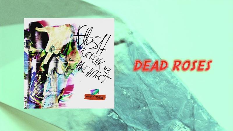 FLESH - Dead Roses [Official Audio]