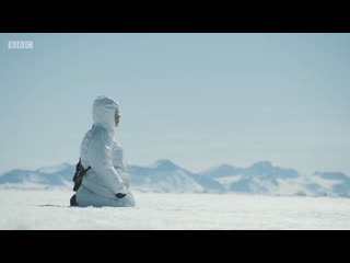 Greenland / охота в гренландии
