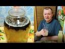 Живой квас 🍺 из Иван-чая на берёзовом соке с мёдом. Russian tea.