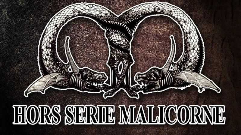 Vidéo hors-série : MALICORNE