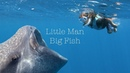 Little Man swimming with Whale Sharks