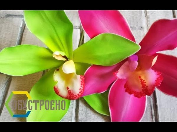 БОЛЬШИЕ ТРОПИЧЕСКИЕ ЦВЕТЫ Орхидея Цимбидиум