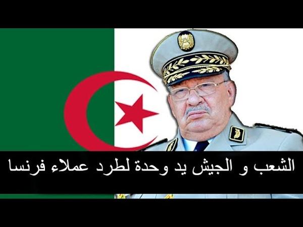 قاهر العملاء: يوجه رسالة للقايد صالح