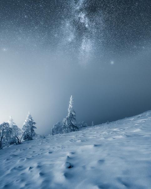 Эта серия снимков одиноких деревьев от финского фотографа Микко Лагерстедта демонстрирует величие и красоту северных широт