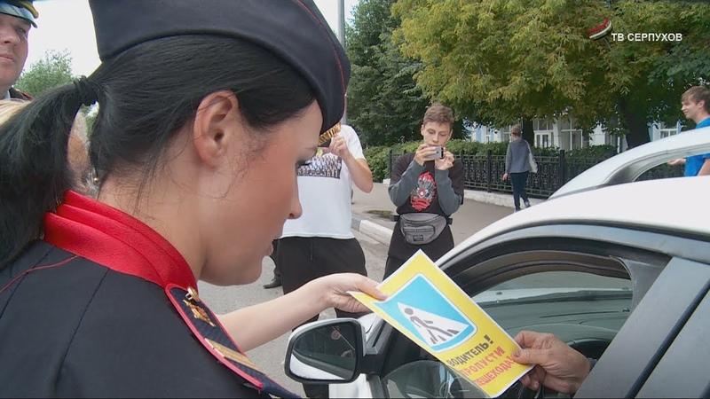 ГИБДД совместно с Молодой гвардией провели акцию Пешеход Пешеходный переход