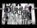 -MASA Works DESIGN- BlackWhiteLyric Video