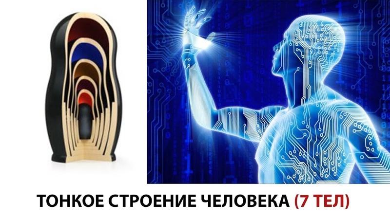 Тонкое строение человека 7 тел Матрица функции свойства примеры