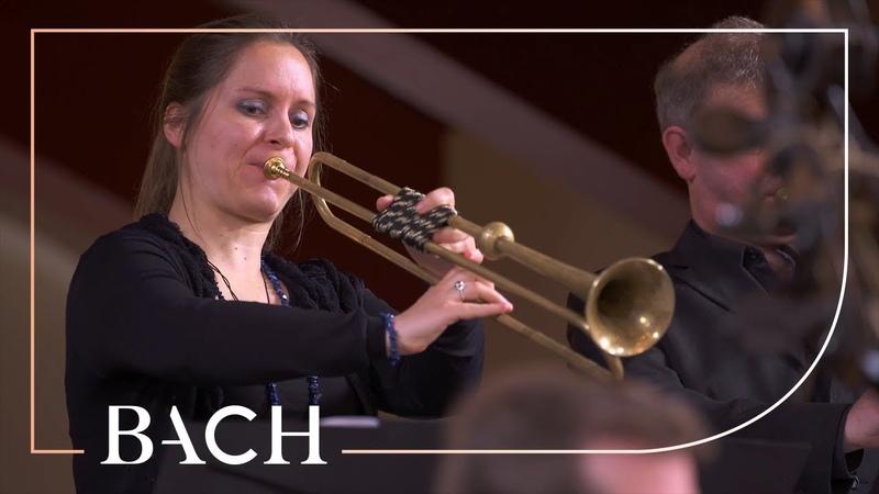 Bach - Easter Oratorio: Kommt, eilet und laufet BWV 249 - Van Veldhoven   Netherlands Bach Society