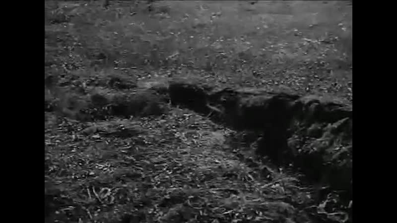 Снайперы Вермахта