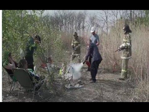 Постановка борьбы государства с лесными пожарами в Сибири и Дальнем Востоке