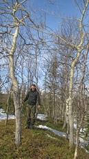 Приятное занятие - собирать упавшие за зиму с деревьев веточки )