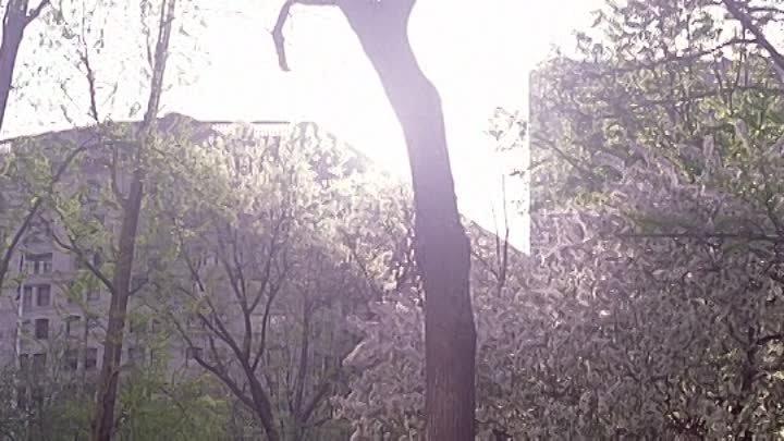 Человек-Паук 2 - Spider-Man 2 . / 2004 год , США .