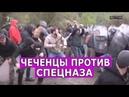 Столкновения чеченцев со спецназом в Панкисском ущелье в Грузии
