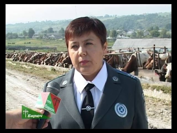 О проблеме бешенства на территории Красногвардейского района 29 07 2016