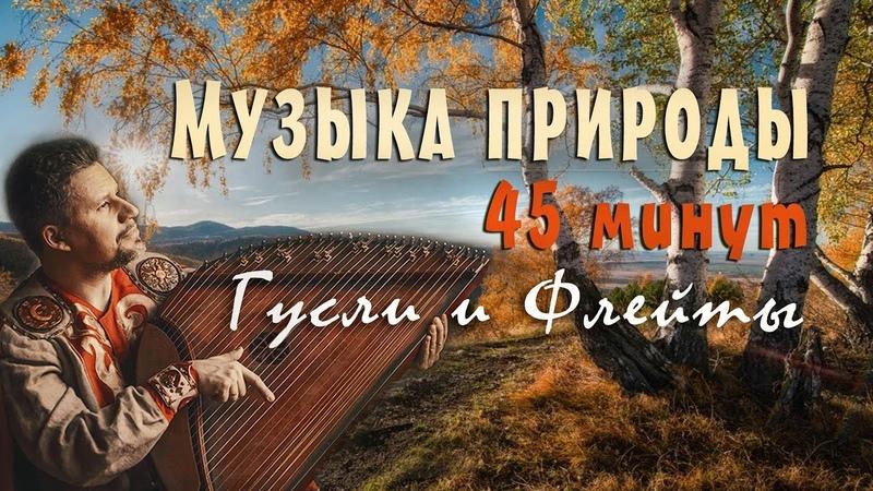 Красивая музыка природы слушать 45 минут 🦋 Русские гусли Флейты Музыка для сна и отдыха