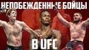 ТОП 5 НЕПОБЕЖДЕННЫХ БОЙЦОВ UFC НЕПОБЕЖДЕННЫЕ БОЙЦЫ