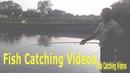 Fish Catching Videos, Rod Reel Fishing Videos In Village Pond. pondfishing bigfish