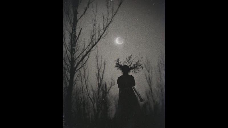 Dark Amelia (Scardex 13.07.19)