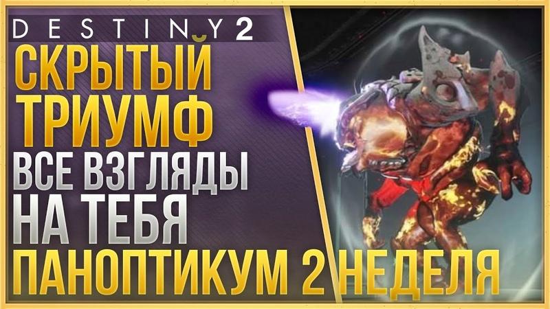 Destiny 2 Испытание ВСЕ ВЗГЛЯДЫ НА ТЕБЯ❗Скрытый триумф паноптикума 2-ой недели ❗