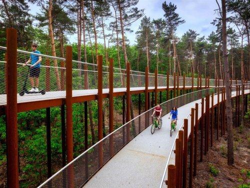 В Бельгии построили обзорную велосипедную дорожку, пролегающую сквозь кроны деревьев В Лимбурге (Бельгия) очень трепетно относятся к велосипедистам: для них строят специальные велодорожки в