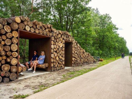 В Бельгии построили обзорную велосипедную дорожку, пролегающую сквозь кроны деревьев