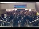 Hundreds of Illegal Migrants Shut Down Paris Airport