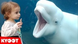 Funny Kids at the Aquarium Girl SPOOKED By A Beluga Whale!