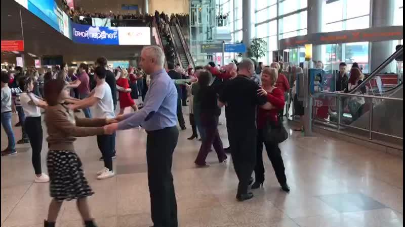 Аэропорт Домодедово Севастопольский вальс