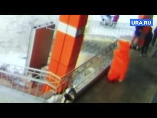 В Пермском крае хулиганы напали на девушку в костюме кота