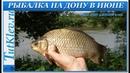 Рыбалка на ДОНУ в Июне Просто Рыбалка С Семьей и Друзьями на староем местечке под Дивногорьем