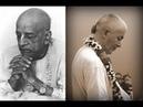 Защищайте репутацию ИСККОН - ЕМ Чайтанья Чандра Чаран Прабху, ШБ 3.1.16 (15 февраля 2019)