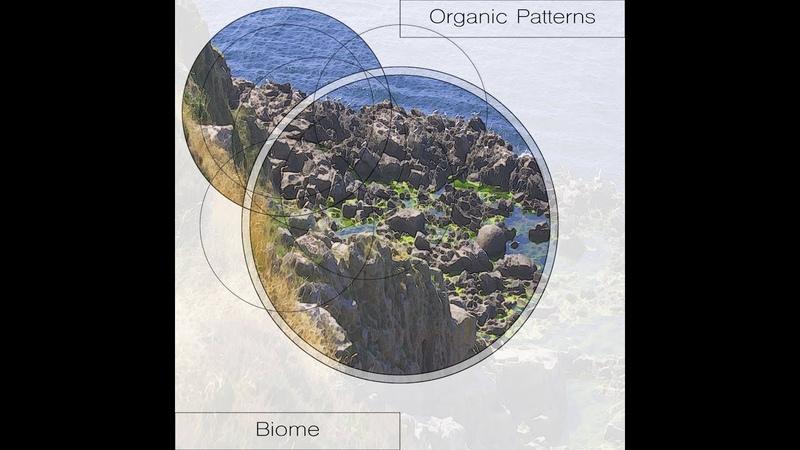 Organic Patterns - Biome