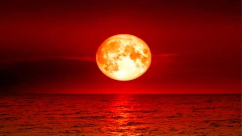 Stive Morgan - Red Moon Mars