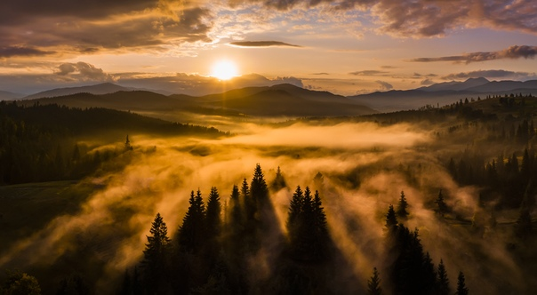 Неожиданный туман на закате после дождя. Дронопанорама из 4 кадров