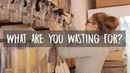What Are You Wasting For? | Documentary