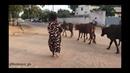 NADEEYA My vybz from Ndjamena Tchad 2k17