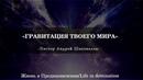 Гравитация твоего мира Андрей Шаповалов