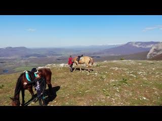 Передовое конная прогулка (эпизод 0348) ветер 20 м/с с порывами...