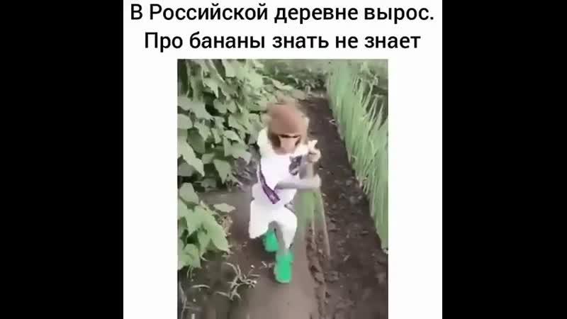 Вырос в россии