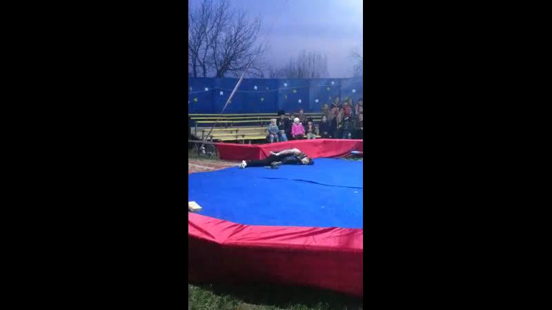 Питон задушил дрессировщика в цирке во время выступления