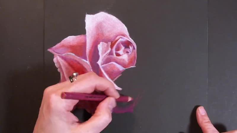 Drawing a Rose with Colored Pencils on Black Paper